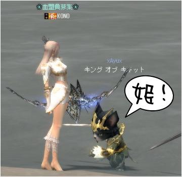 ネコの王様⑤