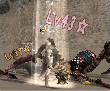 Lv43 & Lv39