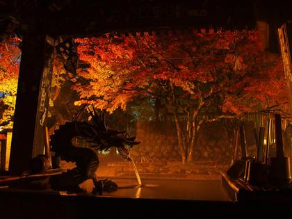 伊豆市修善寺 修禅寺の紅葉