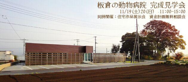 2011.11.12.jpg