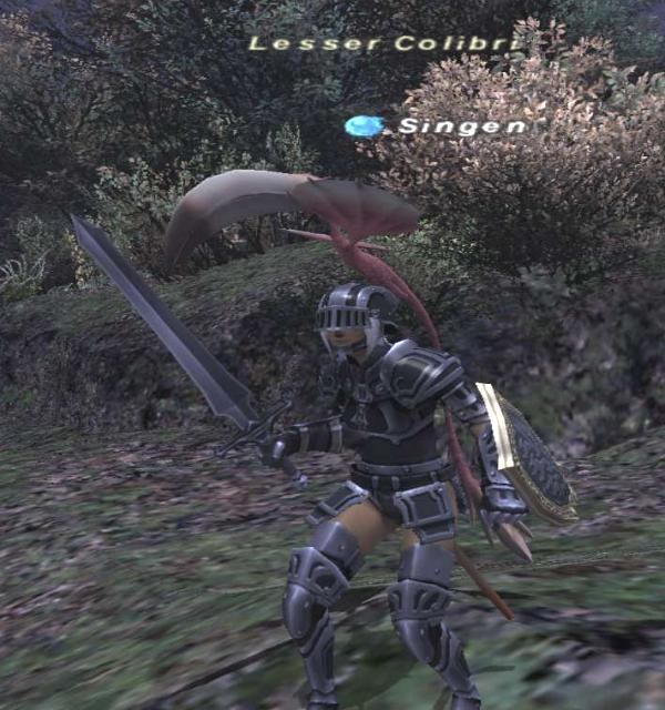 knight1_1.jpg