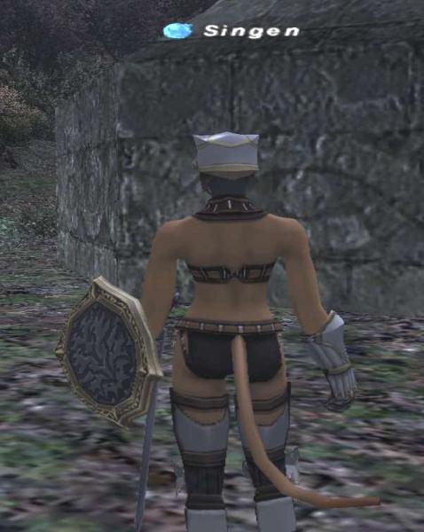 knight2_3.jpg