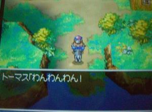 toruneko11.JPG