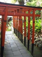 torii3.19.jpg