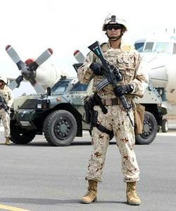 ソマリア,海賊,多国籍軍,派遣海賊対処部隊,LRAD,音響兵器,射撃,海賊王,