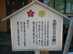 2009_11040004-2.JPG