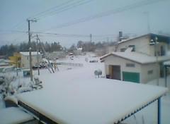 PIC_0003269.JPG