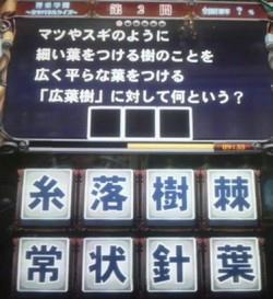 100319-3.jpg