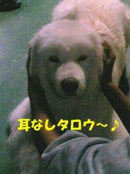 091204_2005~02.JPG