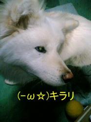 100111_0030~02.JPG