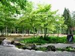 分水嶺公園