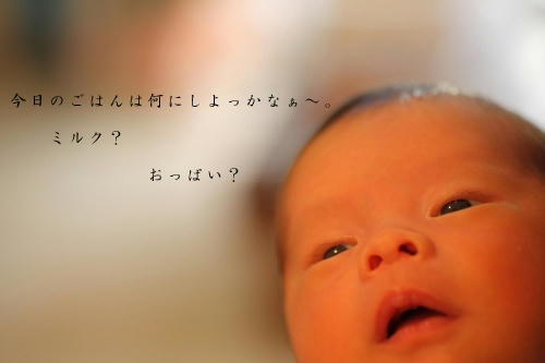s-IMG_3651_2.jpg