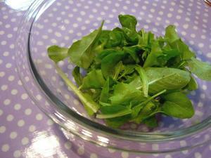 家庭菜園でサラダ!