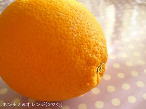 ホンモノのオレンジ(笑