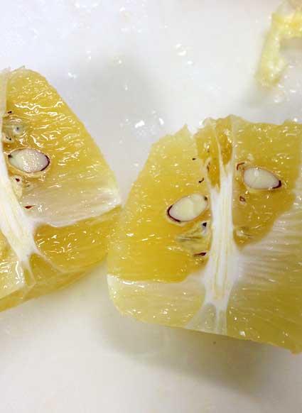 レモンの種