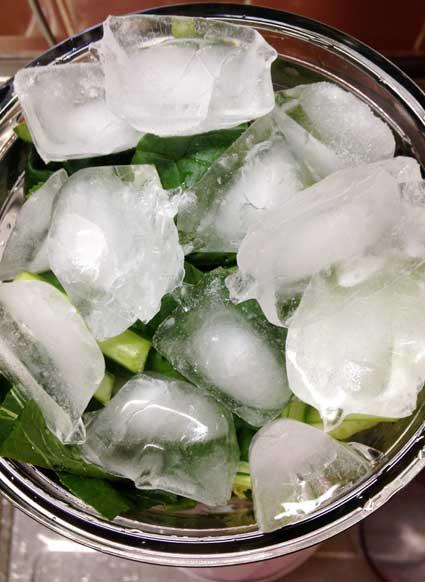 貝割れ大根のグリーンスムージーの材料と氷。