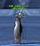 Aion0248.jpg