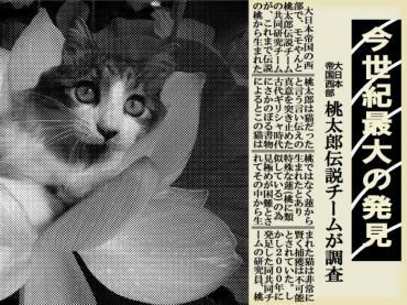momo_news.jpg