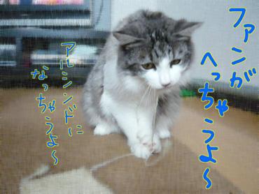 AP1130298.jpg