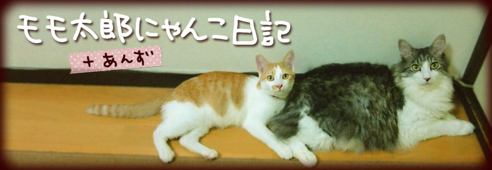 モモ太郎+あんず