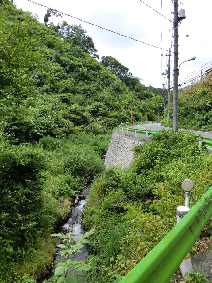 takao_010.jpg