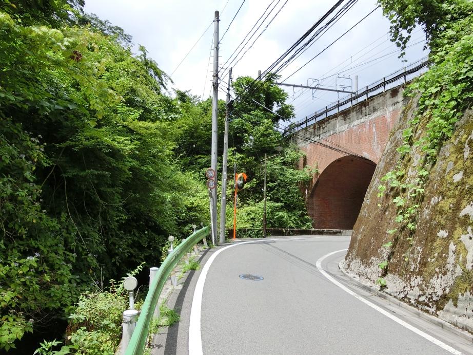 takao_011.jpg