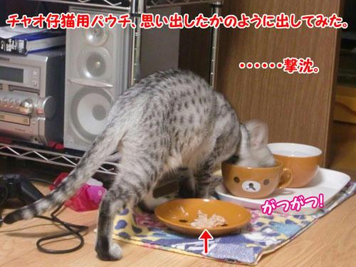 かなめ×ぶろぐ0221【もっと食べやすい姿勢ないの?】