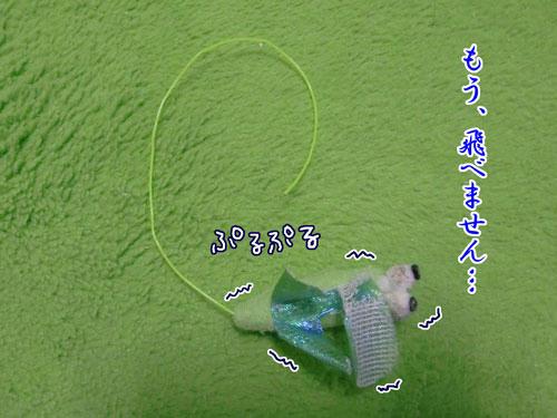 かなめ×ぶろぐ0262【ぷるぷるぷるぷるぷる】