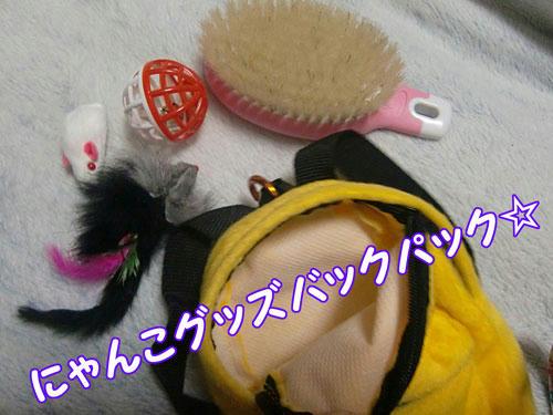 かなめ×ぶろぐ0279【食べ物は…?】