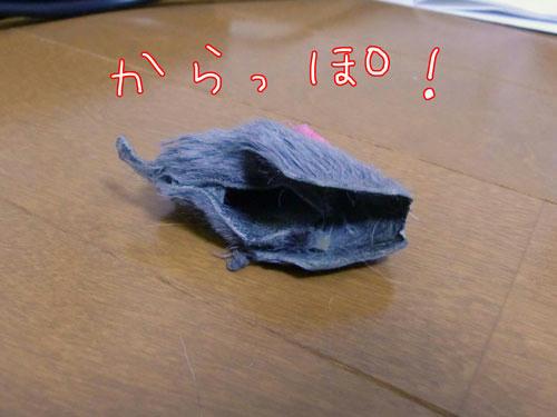 かなめ×ぶろぐ0716【からっぽ!!】