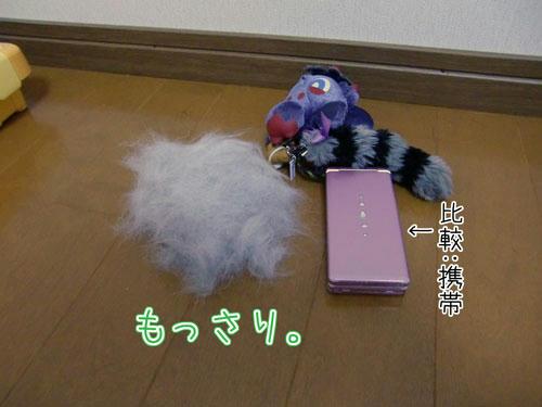 かなめ×ぶろぐ1201【もっさりもっさり(比較:携帯)】