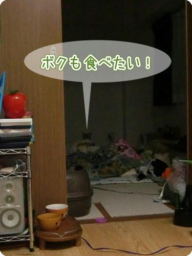 かなめ×ぶろぐ1413【ボクも食べたい!】