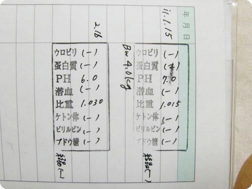 かなめ×ぶろぐ1473【良い結果☆】