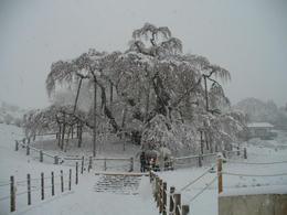 雪の前日2