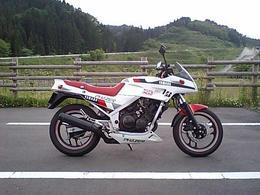 フェザー250