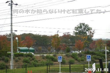 公園の駐車場は紅葉中~