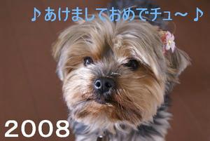 4dc256d7.jpg