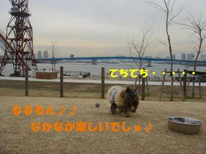 2bf33b15.jpg