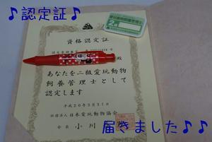 f66c8746.jpg