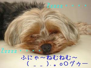 5fbfa27e.jpg