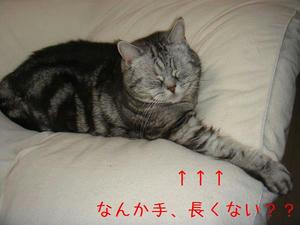 7e68b881.jpg