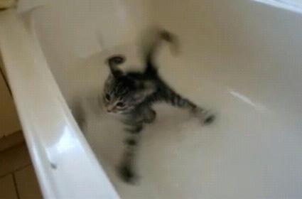 Luna_falls_into_Bathtub.JPG