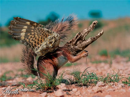 Winged_Squirrel_Croc.jpg