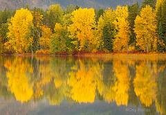 Montana_Fall.jpg
