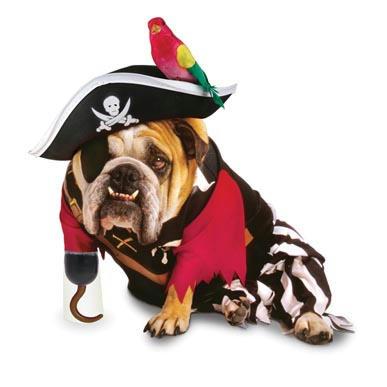 dog_costume_5.jpg