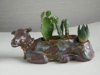 枝豆形盆栽鉢の今