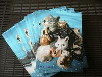 デザフェス:チャリティーポストカード展