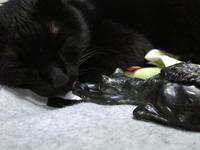 家鴨窯243号 ずり落ち黒猫ペンダント