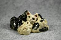 家鴨窯280号 5匹の群れ猫