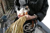 家鴨窯289号 2012年注連縄飾り3種